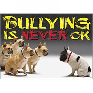 Bullying is never okay